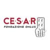 Fondazione CE.S.A.R. Onlus